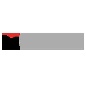octopus networks magna logo